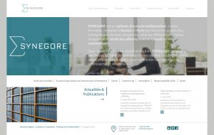Synegore page d'accueil
